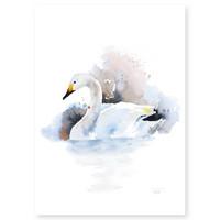 Ester Visual: Laulujoutsen 50x70 cm
