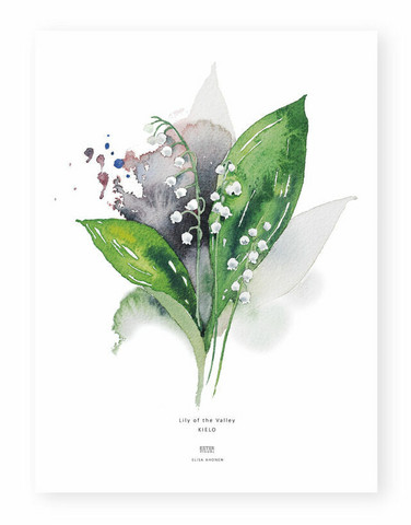 Ester Visual: Kielo A4, 21x30 cm