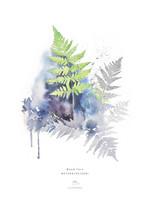 Ester Visual: Metsäalvejuuri A4, 21x30 cm