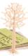 Lovi Puu 16,5 cm, luonnonvärinen koivu