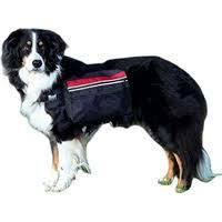 Koiran selkäreppu L 28x18cm