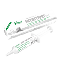 Intestivet 15ml