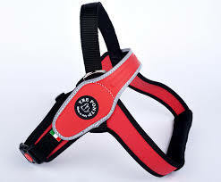 Tre-Ponti Primo koiran valjas punainen