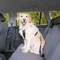 Trixie turvavaljas autoon L