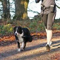 Trixie juoksuvyö 60-120cm/40mm