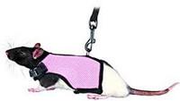 Trixie Rotan valjaat 12-18cm