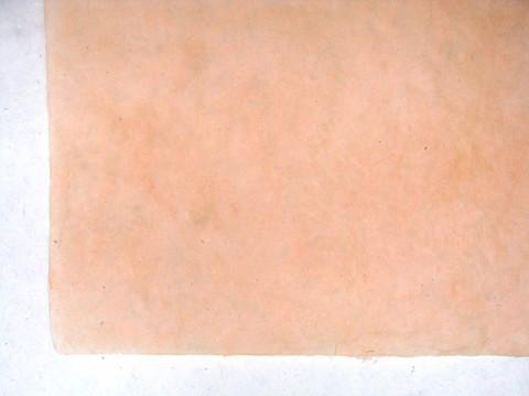 50x75cm persikka EE/30