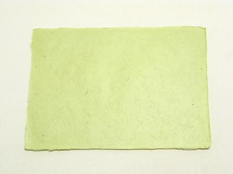 A4 omenan vihreä C 26, revitty reuna