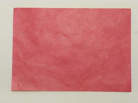 A4 pinkki RD21, suora reuna
