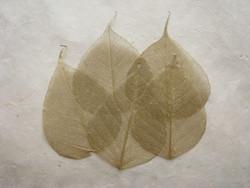 Harsolehti 'pipal' kulta 5 kpl/paketti