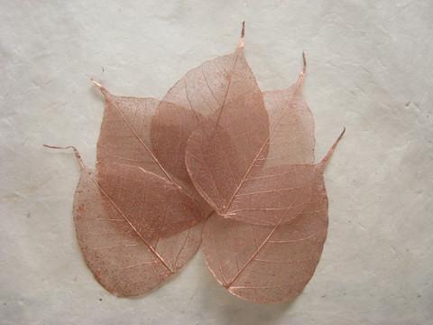 Harsolehti 'pipal' kupari 5 kpl/paketti