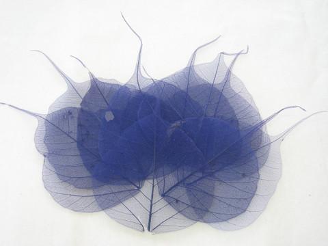 Harsolehti 'pipal' sininen 10 kpl/paketti