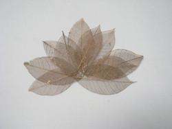 Harsolehti 'kumipuu' keskikoko kulta, 10 kpl/paketti