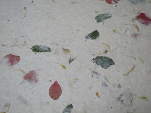 50 x 75 cm lokta ja bougainvillea, mintunlehti, kehäkukka, D/40, kalanteroitu
