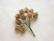 Paperiruusu, beige 10 kpl/paketti