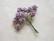 Paperiruusu, vaalea liila 10 kpl/paketti