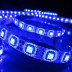LED Valonauha 5m, 12V, 15W, IP20, sininen