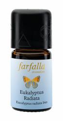 Eteerinen öljy Eukalyptus radiata Luomu villilajike 5ml