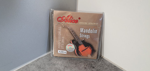 Mandoliinin kielet (Alice AM04)