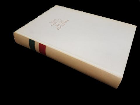 Kirja (Saahi Pahlafi - Maani puolesta)