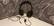 Tritton Kama pelikuulokkeet (musta)