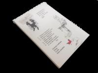 Kirja (Tuure Junnila - Kekkosen valtakaudesta Koiviston aikaan)