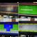TV -peli (Jakks Activision)