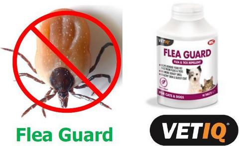 Flea Guard ravintolisä punkin torjuntaan