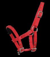 Mini-Shetlanninponin päitset, punainen