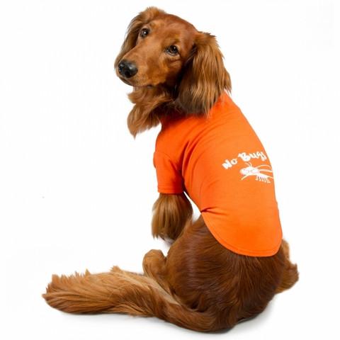 Koiran ötökkä T-paita, oranssi