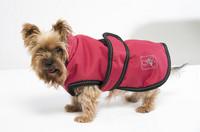 Koiran takki, punainen