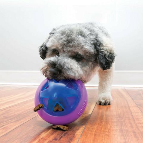 Koiran aktivointilelu S/M