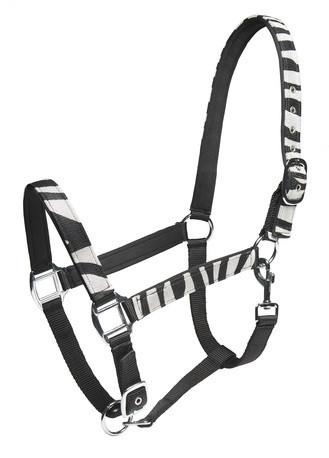 Nailonriimu zebra