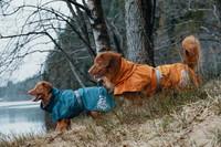 Koiran monsuunitakki