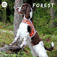 Forest HUOMIOLIIVI