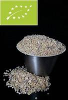 Boswellia Serrata jauhe 1kg Fortinut