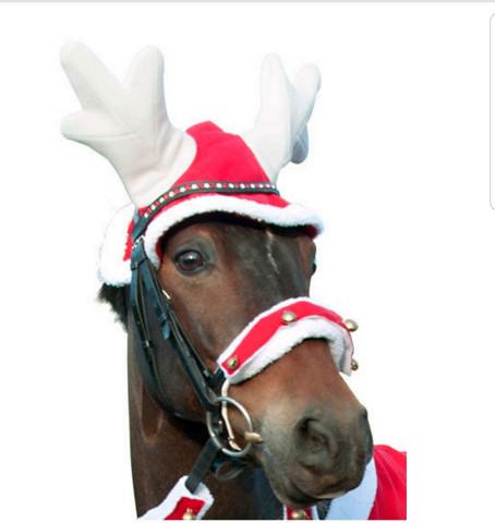 Poronsarvet hevoselle