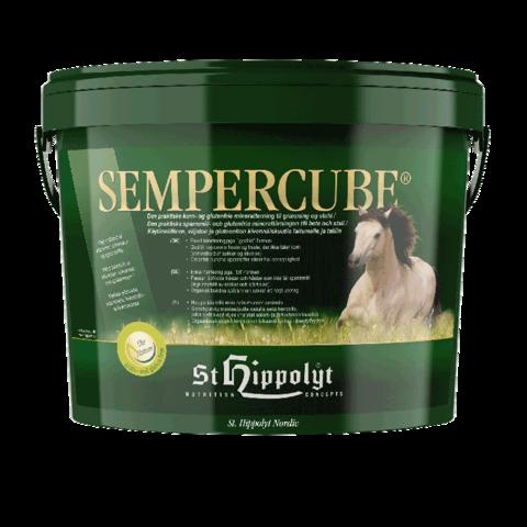 SemberCube kuutio kivennäinen 10kg