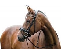 Ergo nivelsuitset Horse Guard