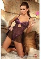 Teddy Beauty Nihgt oxalis teddy purple