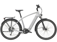 Trek Allant+ 7 500WH QuickSilver