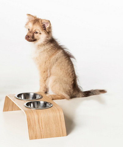 THINK TODAY Wave bent food tray for small pets