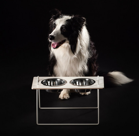 THINK TODAY Wuff's food cup holder for medium-sized dogs