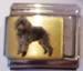 Koira 49, Villakoira