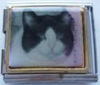 Kissa 2, yhdistelmäpala 18 mm