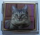Kissa 3, yhdistelmäpala 18 mm