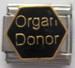 Elinten luovuttaja, Organ Donor