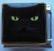 Musta kissa