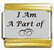I Am A Part of, kullanväriset reunat