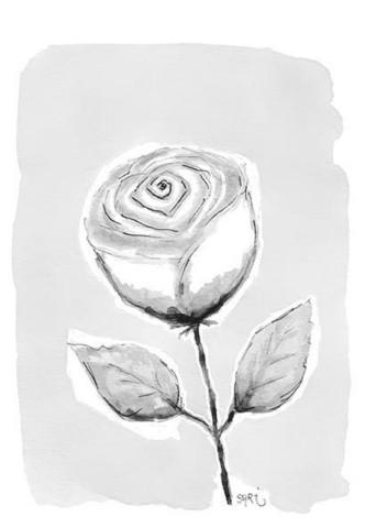 KORTTI, Ruusu harmaa, 2-osainen
